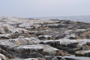 Notice how uneven the island is. There was no flat area on the island; rather, it was full of crags and sharp rocks. The men constantly were slipping and falling on ice-covered rocks.